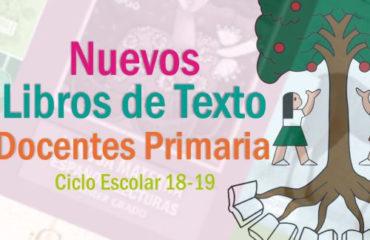 libros de docentes primaria