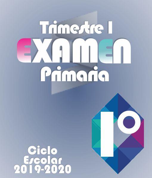 Examen de Primaria Primer Grado - Primer Trimestre