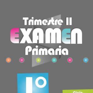 Examen de Primaria 1° Grado - Segundo Trimestre 2018-2019