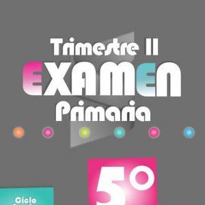 Examen de Primaria 5° Grado - Segundo Trimestre 2018-2019