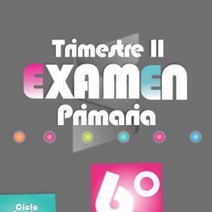 Examen de Primaria 6° Grado - Segundo Trimestre 2018-2019