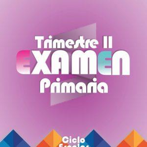 Examen de Primaria Segundo Trimestre 2019-2020 (Los Seis Grados)
