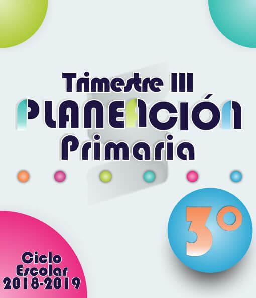 Planeación Argumentada 3° Grado de Primaria – Ciclo Escolar 18-19 (Trimestre III)