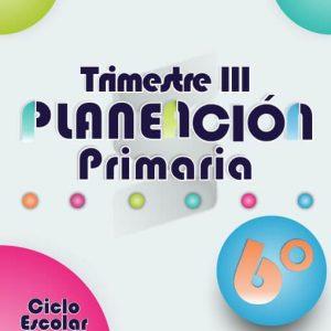 Planeación Argumentada 6° Grado de Primaria – Ciclo Escolar 18-19 (Trimestre III)