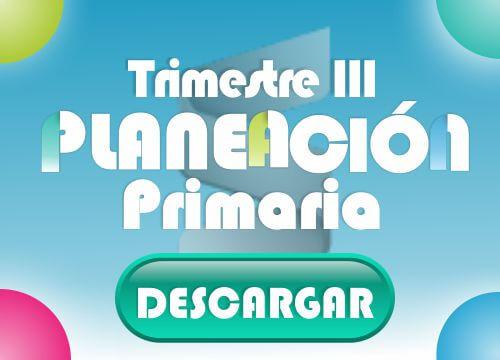 Primaria - Trimestre III Principal
