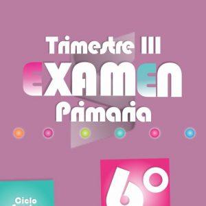 Examen de Primaria 6° Grado Tercer Trimestre 2018-2019
