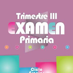 Examen de Primaria Tercer Trimestre 2018-2019 (Los Seis Grados)