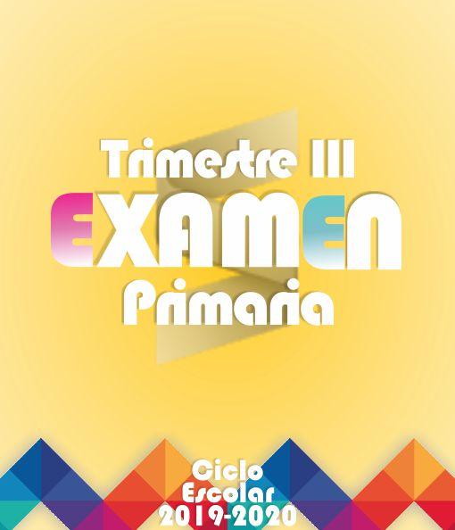 Examen de Primaria Tercer Trimestre + Evaluación Final - 2019-2020 (Los Seis Grados)