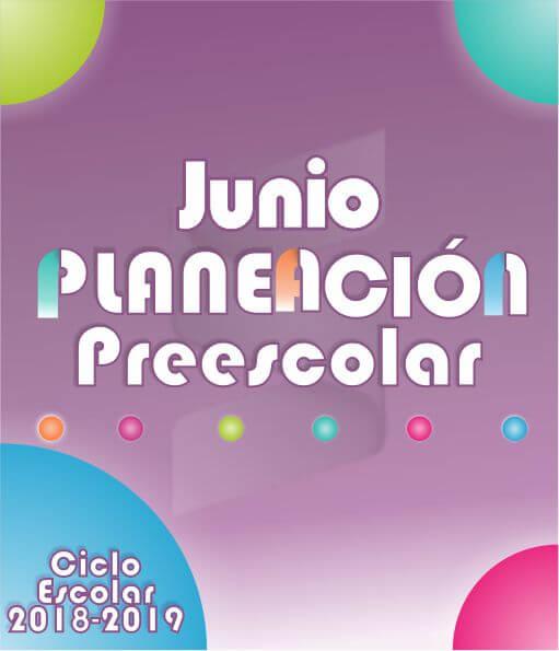 Planeación Argumentada Preescolar - Ciclo Escolar 18-19 (Junio - 3er Momento)