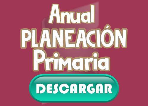 Anual Primaria 3