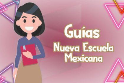 Guías para La Nueva Escuela Mexicana - CTE
