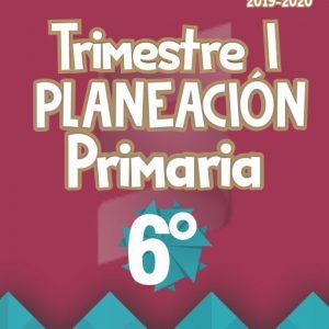 Planeación Argumentada 6° Grado de Primaria - Ciclo Escolar 19-20 (Trimestre I)