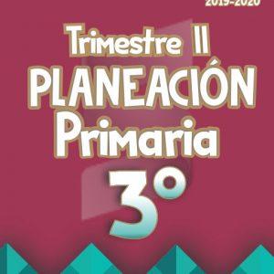 Planeación Argumentada 3° Grado de Primaria - Ciclo Escolar 19-20 (Trimestre II)