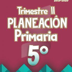 Planeación Argumentada 5° Grado de Primaria - Ciclo Escolar 19-20 (Trimestre II)