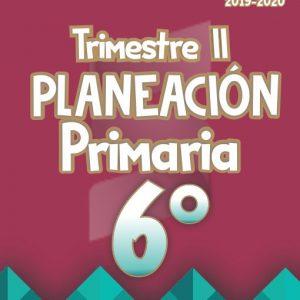 Planeación Argumentada 6° Grado de Primaria - Ciclo Escolar 19-20 (Trimestre II)