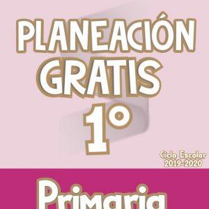 Planeación Argumentada 1° Grado de Primaria – Ciclo Escolar 19-20 (GRATIS)