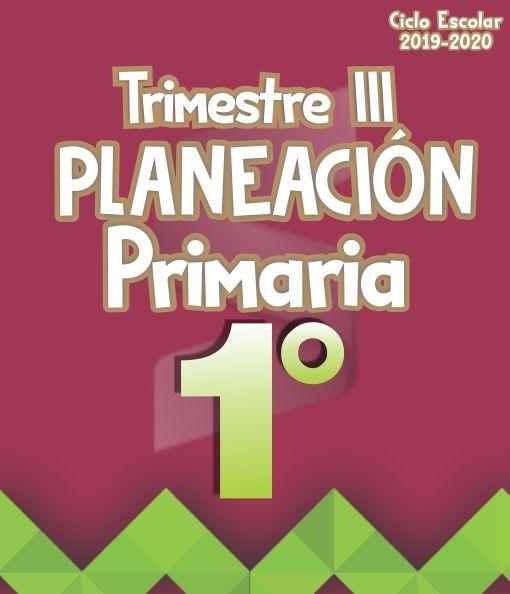 Planeación Argumentada 1° Grado de Primaria – Ciclo Escolar 19-20 (Trimestre III)